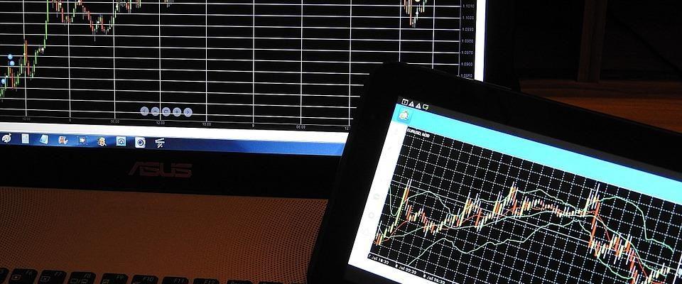 best forex brokers in the market